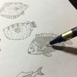 鯛 ハリセンボン スケッチ